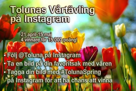 toluna-spring-SE