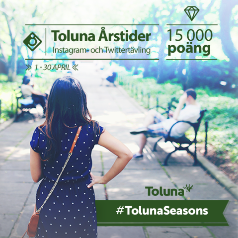Instagram Toluna Seasons_SE