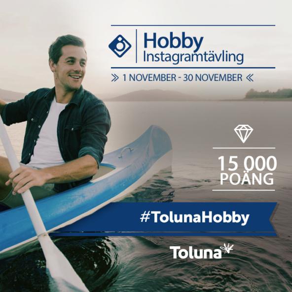 tolunahobby_se