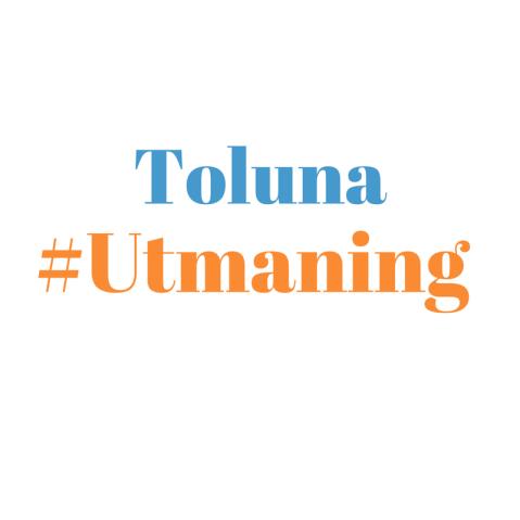 toluna-challenge-se