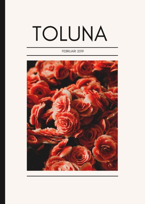 Toluna Mag SE Feb
